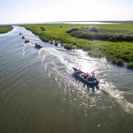 Danube Delta Safari
