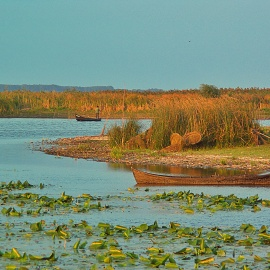danube delta resort 054